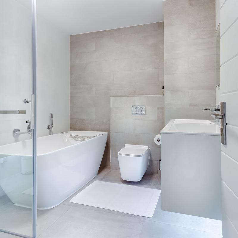 Modern tub and toilet bathroom